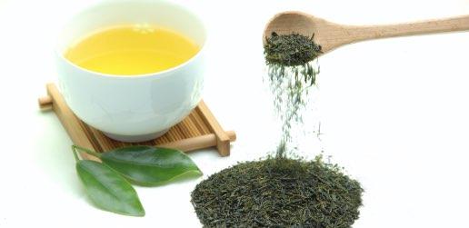 緑茶で免疫力を高めよう!