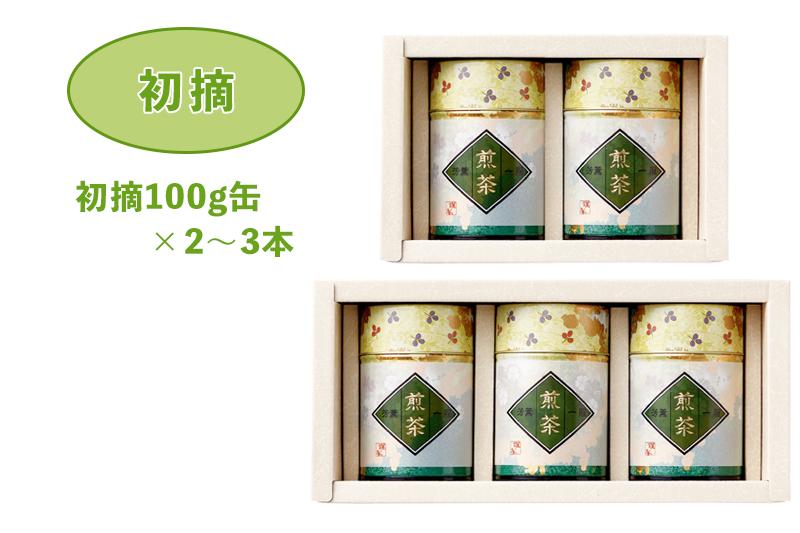 贈答用お茶(静岡茶・牧之原茶)一番人気!初摘100g缶×2~3本